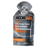 Accel Gel 4:1 Protein Energy Gels : CITRUS ORANGE