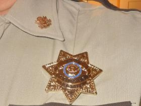 Walking Dead King County GA Sheriff Badge