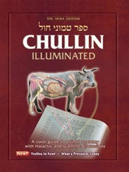 Chullin Illuminated, Revised Edition