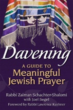 DAVENING A Guide to Meaningful Jewish Prayer