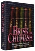 Brisk on Chumash: Insights on the Parashah from Brisk to Jerusalem