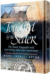 Touched by a Seder