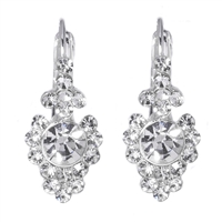 Rhinestone Lever back Earrings