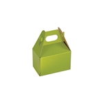 Mini Gable Boxes - Shimmer Frost Leaf pattern