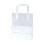 Small Frosted Shopping Bags