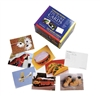 Language Builder Picture Noun Card Set 2