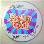 Autographed drum head used by band - v6