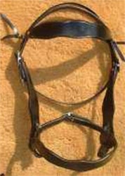 1880's Old-Timer Headstall
