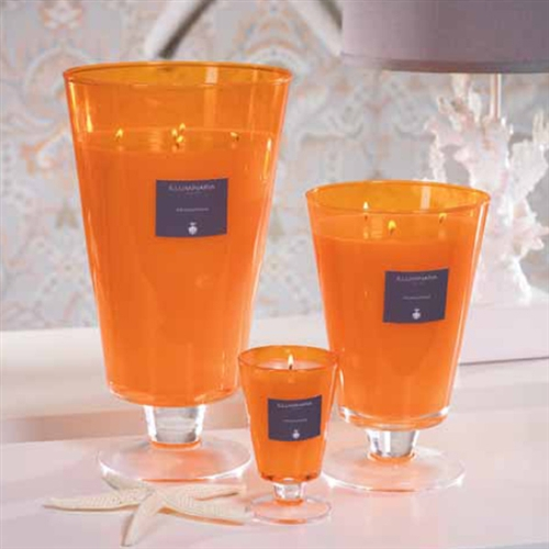 Zodax Illuminaria Wax Filled Vase Candle Jar - Tall on