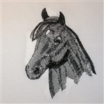 Morgan Horse Head