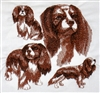 Dogs - Cavalier King Charles Spaniel
