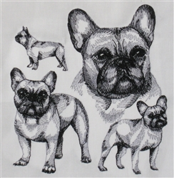 Dogs - French Bulldog