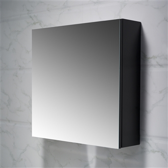 Frameless Mirror Cabinet 24