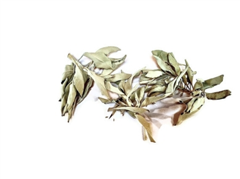 Loose White Sage Smudge 4 oz