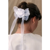 First Communion Veil - Briana