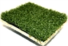 ProMounds OD Pro Padded Artificial Turf