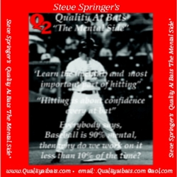 Steve Springer's Mental Side of Hitting CD/DVD Package