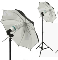 Single Black/silver reflective Umbrella Video background Light Kit