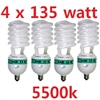 NEW 4x135W CFL 5500K Fluorescent Continuous Pure White Light Bulbs 4800 Lumins