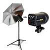 PRO 250 watt/second STROBE STUDIO FLASH MONOLIGHT master head Bowens compatible umbrella stand kit