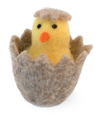 Chick in Egg Baby