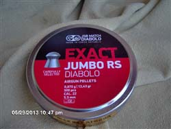 JSB Exact RS.22 13.43/500 tin