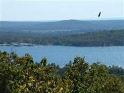 Arkansas, Izard County, 1/3 Acre Horseshoe Bend (Crown Lake). TERMS $75/Month