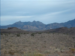 Arizona, Mohave County, 1.25 Acre Lake Mohave Heights. TERMS $150/Month