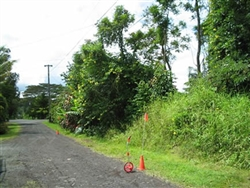 Hawaii, Hawaii County, 2 Adjoining 1/4 Acre Nanawale Estates, Electricity. TERMS $320/Month