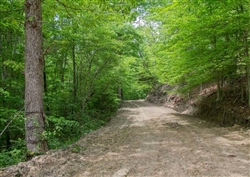 Kentucky, Casey County, 5.06 Acre Laurel Ridge, Lot 3. TERMS $270/Month