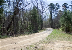 Kentucky, Rock Castle County, 16.02 Acres Chestnut Oak Ridge, Lot 1. TERMS $405/Month