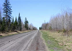 Michigan, Baraga County, 20 Acre Abby Point. TERMS $355/Month