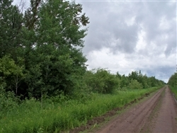 Minnesota, Koochiching County, 20 Acres. TERMS $175/Month