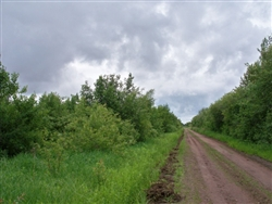 Minnesota, Koochiching County, 20 Acres. TERMS $150/Month