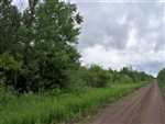 Minnesota, Koochiching County, 40 Acres. TERMS $210/Month
