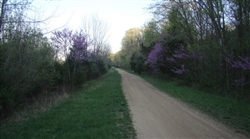 Missouri, Washington County, .21 Acre Roge Creek Valley. TERMS $125/Month