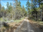 Oregon, Klamath  County, 2.56 Acres Klamath Falls Forest Estates TERMS $160/Month