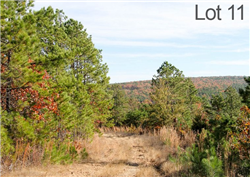 Oklahoma, Latimer  County, 83.10 Acre Stone Creek Ranch, Lot 11, Pond. TERMS $1,125/Month