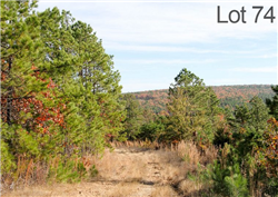 Oklahoma, Latimer  County, 25 Acre Stone Creek Ranch, Lot 74. TERMS $420/Month