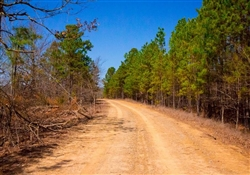 Oklahoma, Latimer  County,  22.47 Acre Stone Creek Phase II, Lot 212. TERMS $460/Month