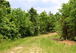 Tennessee, Carroll County, 5.41 Acre Bluebird Ranch. TERMS $210/Month