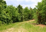 Tennessee, Carroll County, 7.01 Acre Bluebird Ranch. TERMS $240/Month