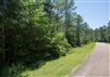 Texas, Jasper County, 0.64 Acre, Rayburn Country, Lot 22, Electricity. TERMS $55/Month