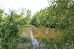 Texas, Red River County, 8.61 Acre McCoy Creek. TERMS $300/Month