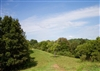 West Virginia, Roane County, 4.86 Acre Heritage Hollow, Lot 21. TERMS $270/Month