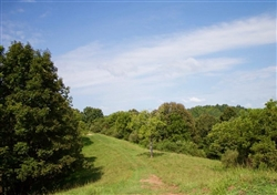 West Virginia, Roane County, 5.40 Acre Heritage Hollow, Lot 4. TERMS $360/Month