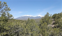 Colorado, Costilla County, 5.29 Acres Sangre De Cristo Ranches. TERMS $180/Month