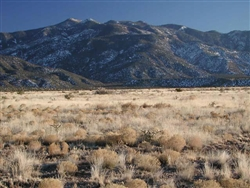 New Mexico, Valencia County, .25 Acre Rio Del Oro. $900 CASH