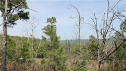 Oklahoma, Pittsburg County, 9.84 Acres Indian Ridge II. TERMS $170/Month