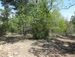 Oklahoma, Latimer  County, 6.65 Acre Pine Mountain Ranch. TERMS $185/Month